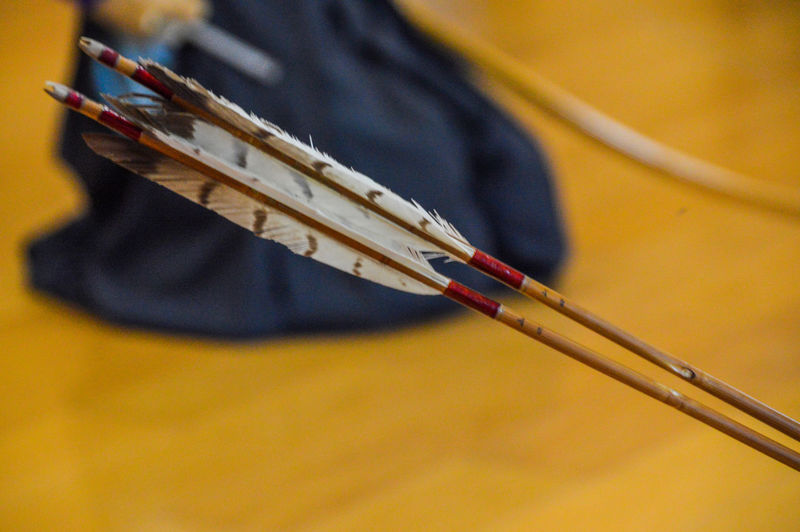 Close-Up Of Arrows