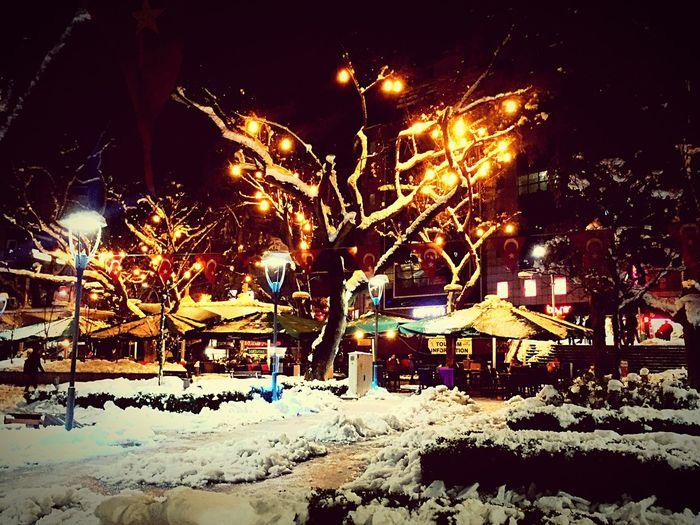 Light Relaxing It's Cold Outside Showcase: January Turkey Tree EyeEm Relaxing Colors Popular Photos Beautiful Day EyeEm Best Shots Eyeemphotography EyeEmBestPics Photooftheday The Week Of Eyeem EyeEm Best Edits Snow ❄ Trees Love Snow Hello World