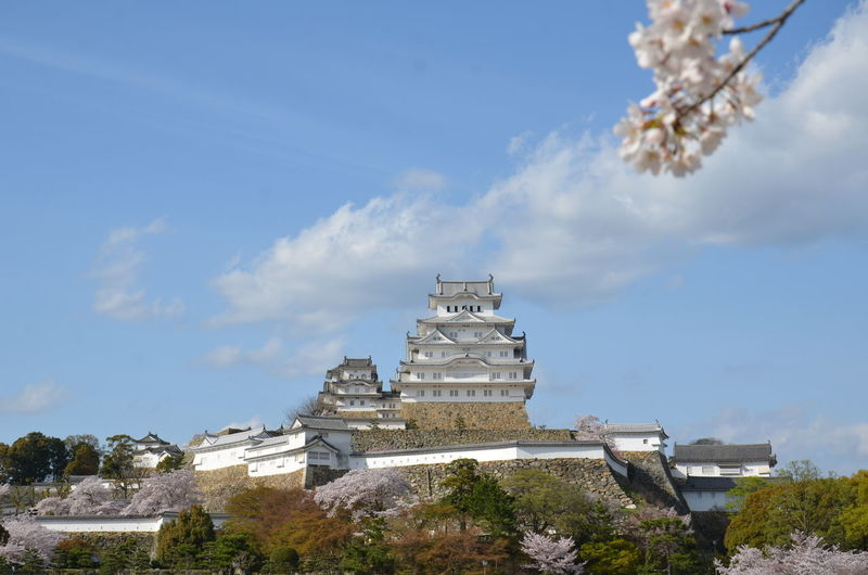 Himeji catle Architecture Building Exterior Built Structure Cloud - Sky Day Himeji Castle Low Angle View Nature No People Outdoors Sky Tree