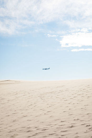 Low angle view of airplane flying over beach against sky