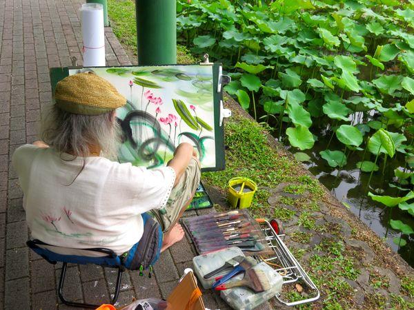 Artist Creating Art Leisure Activity Lifestyles Painting Pallet People Watching Water Lilies Waterlilypond
