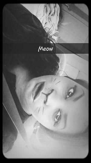 Halloween Catmakeup