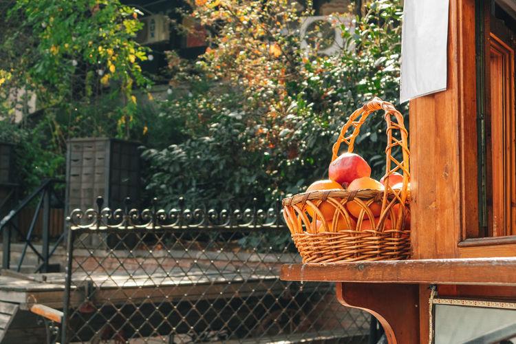 Full frame shot of fruits and plants in basket