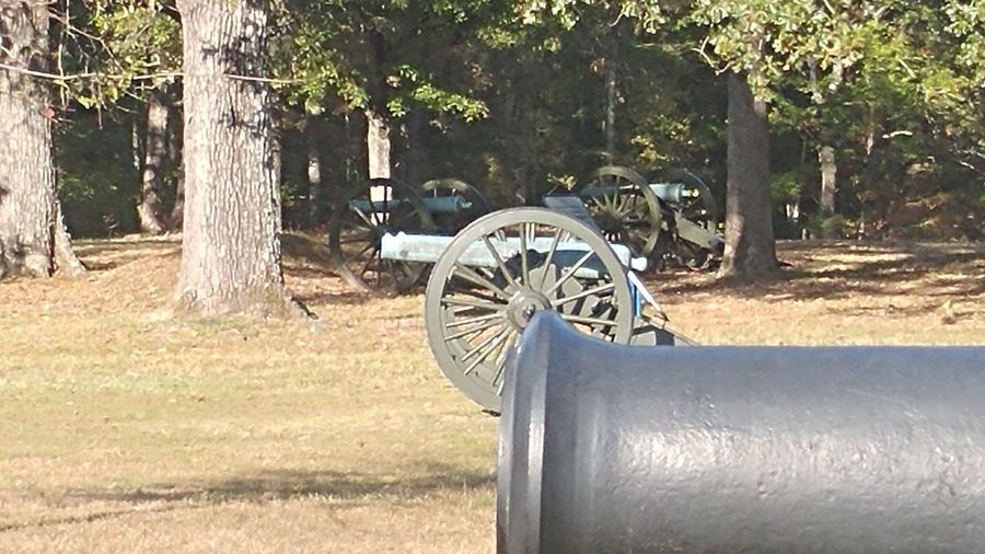 civi Civil War Cannon Tree Nature Sunlight No People Outdoors Growth Day Beauty In Nature Grass civilwar Civil War History Shilo Battlefield Military Battle Civilwar CivilWar360 War The Past