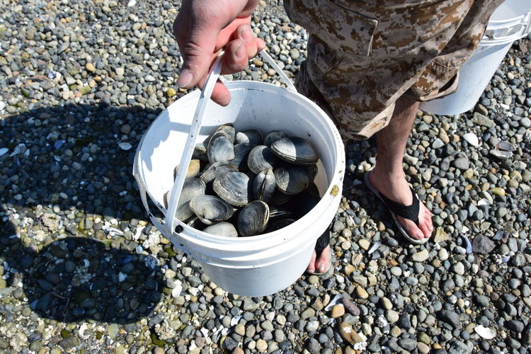 Low section of man carrying clams in buckets at beach
