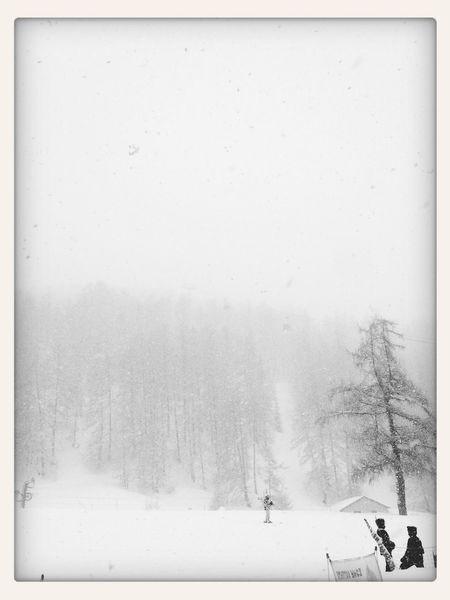 Vars Ski Neige Poudreuse