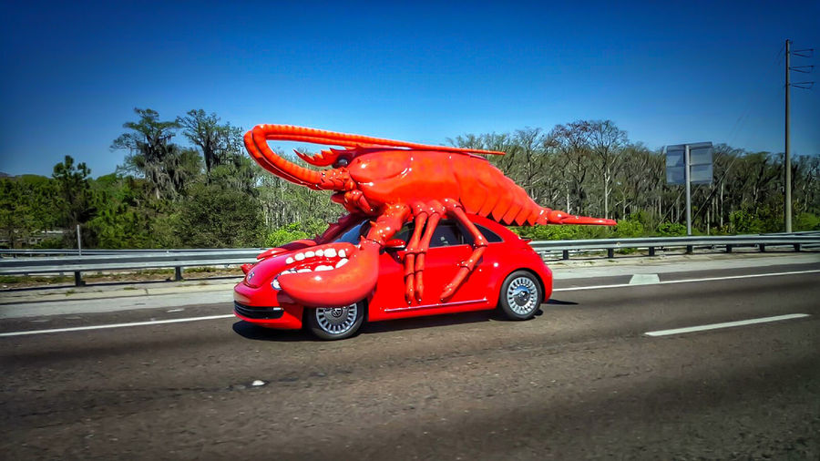 Red Lobster  Streetphotography Photography In Motion Capture The Moment On The Streets Check This Out Volkswagen Beetle Volkswagen Red Color Explosion EyeEm Best Shots EyeEm Best Edits Getting Inspired From My Point Of View Eye4photography  Highway Lobster Car