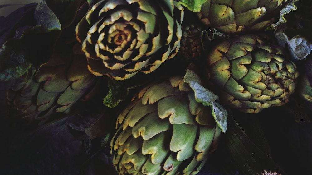 Artichokes 🌱 Vegetable Nature Outdoors Green Color Growth Day Plant No People Leaf Artichoke Agriculture Close-up Beauty In Nature Illuminated Shadows Beauty In Nature Black And White Fragility Airplane Food Art Is Everywhere EyeEmNewHere The Secret Spaces