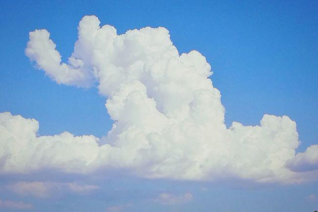 Cloud - Sky Sunny Blue Day Sky No People Nature Elephant Fantasy Fantasia Elefante  Cielo Sogni Breathing Space EyeEmNewHere