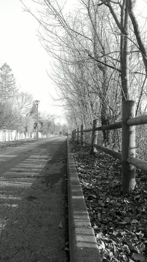 B/W Paths EyeEmNewHere Blackandwhite Blackandwhite Photography Country Countryside Path Fence Streetphotography Streetphotography Outdoors Day Tree No People Nature Sky Grass Mobility In Mega Cities