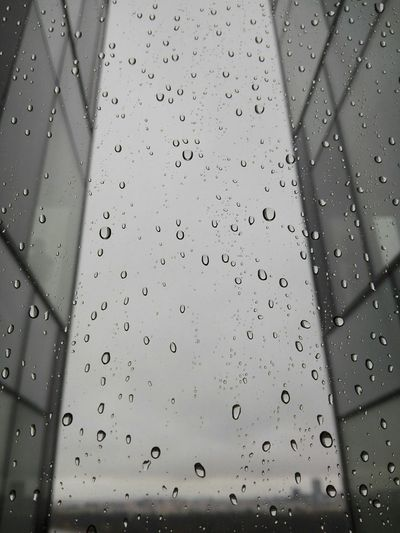 Rainy Days☔ Rain Raindrops Rainy Day Water Drops Drops Rain Drops On The Window Drops On The Glass Dropsontheglass Dropsofwater Rainy Autumn Rainy Afternoon. Hello World Check This Out Eye4photography  EyeEm EyeEm Gallery Eyemphotography