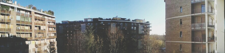 Panorama on a sunny sunday Loving Sun