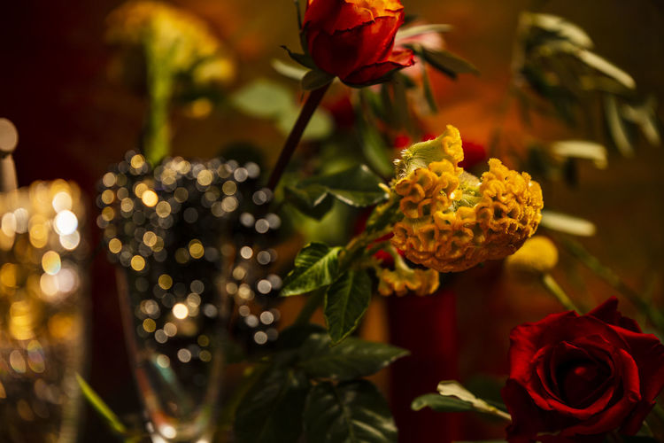 flowers and jewelry Abundance Wealth Celebration Decoration Jewelry Pearls Flower Flowering Plant Plant Beauty In Nature Freshness Close-up Fragility Petal Vulnerability  Inflorescence Flower Head Nature Rosé Rose - Flower Red Growth No People Focus On Foreground Selective Focus Plant Part Flower Arrangement Bouquet