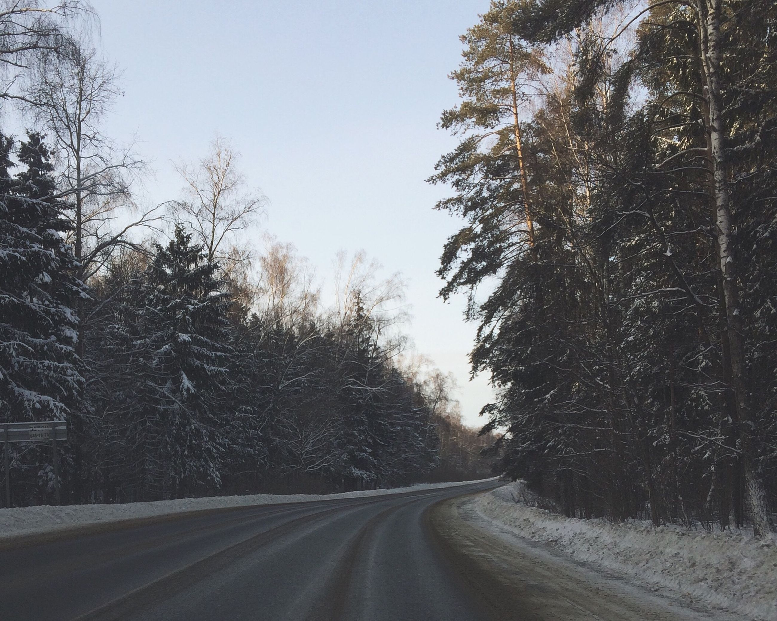 the way forward, road, tree, transportation, clear sky, diminishing perspective, snow, vanishing point, winter, empty road, cold temperature, country road, tranquil scene, nature, tranquility, sky, street, landscape, beauty in nature, road marking
