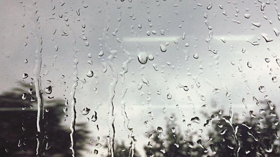六月的雨,六月的雪… Wet Water Window Indoors  Rain Rainy Days No People