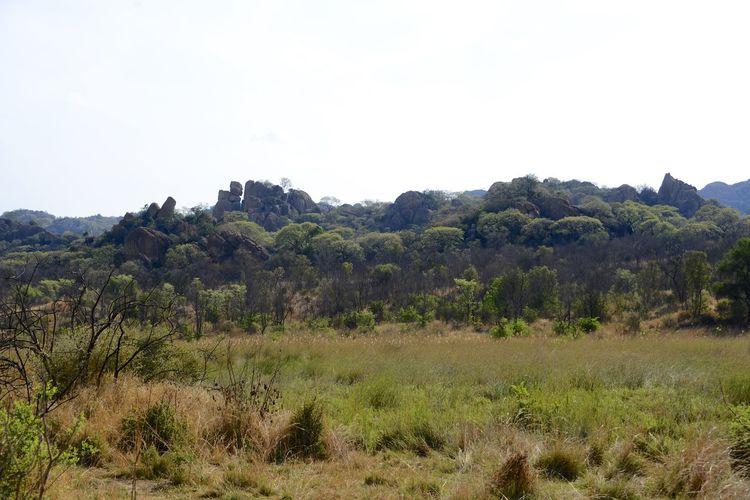 Rhodes Matopos National Park MatopoHills National Park Nature Rhodes UNESCO World Heritage Site Zimbabwe Africa Landscape Rhodes Matopos National Park Unesco