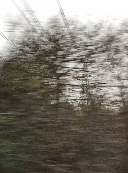 Tree Nature Outdoors Electricity Pylon Sky Connection Movement Movement Blur From A Moving Vehicle