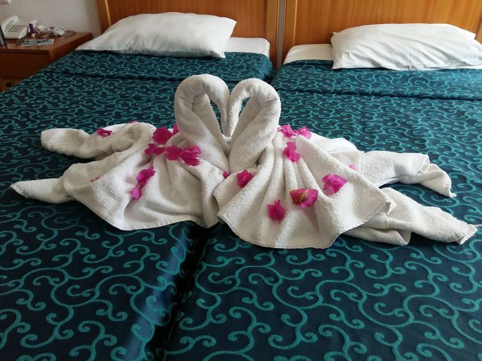 Bed Bett Honeymooning Romance Romance ❤✨✨ Romantic Schwan  White Swan Bedroom Comfortable Domestic Room Flitterwochen Handtücher Home Interior Honeymoon Hotel Hotel Room No People Rose - Flower Roses Towel Animal Towel Sculputure Towel Swans Towels White Swans