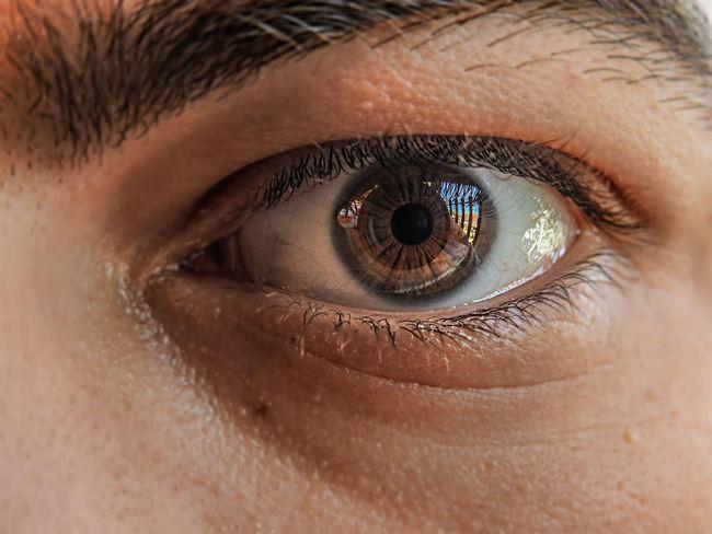 Iris Adult Close-up Day Eyeball Eyelash Eyesight Human Body Part Human Eye Iris - Eye Looking At Camera One Person People Real People The Week On EyeEm