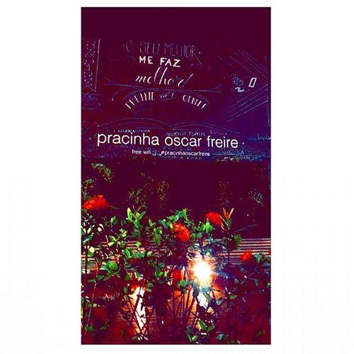 """Pracinha Oscar Freire do snap para o insta ♥♥♥♥♥♥♥♥♥♥♥♥♥♥♥♥♥♥♥♥ """"O seu melhor me faz melhor! Sp4you Vidanoturnasp Pracinhaoscarfreire Spemcores Natureza Nasruasdesaopaulo Saopaulo SP Existecoresemsp Existenaturezaemsp Oscarfreire Sampa Essepê"""