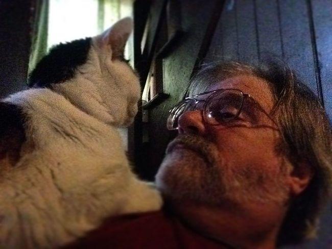 Good Morning! Katze Ilovemycat Artistscats IPadography Mycat Cat Meandmycat Selfie ✌ Hello World That's Me Pets Monday