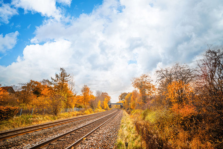 Railroad tracks amidst trees against sky during autumn