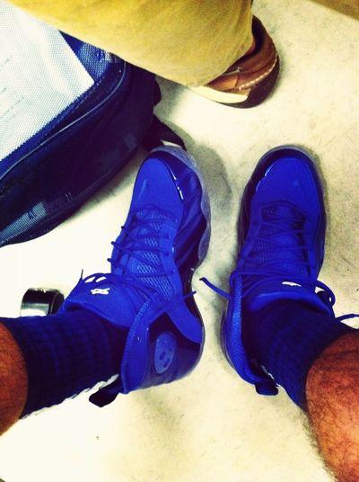Memphis Blue Zoom Rookies