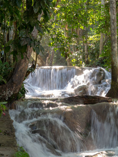 Falls at Dunns River Beauty In Nature Nature Outdoors Waterfall Falls Dunns River Falls Dunns Falls Stone Water Falling Water Rocks Tropical Tropical Forest
