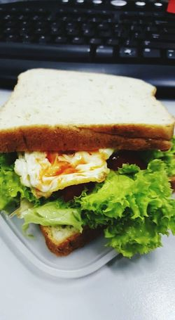 Food Plate Ready-to-eat Indoors  Serving Size Sandwich Freshness Healthy Eating Day Breaktime Breakfast Time Breakfast White Vege Vegetable Sandwich Sandwich Time Gourmet Freshness Bread Meal Eggs... Chilli Sauce