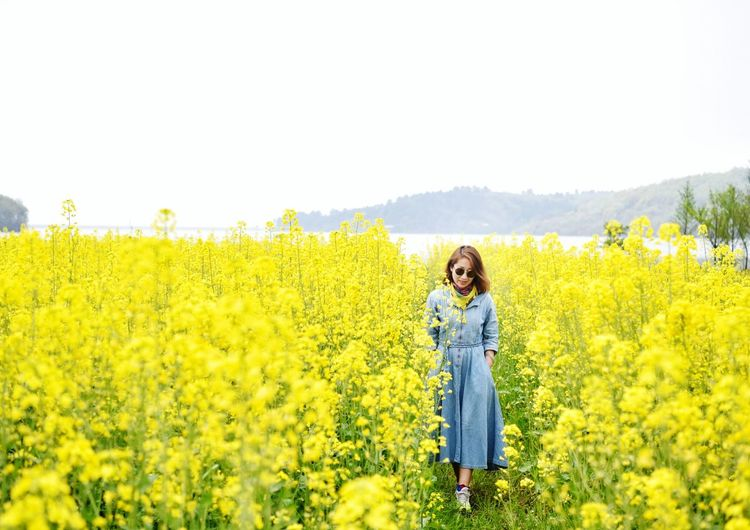 Full length of woman walking amidst yellow flowers on oilseed rape field