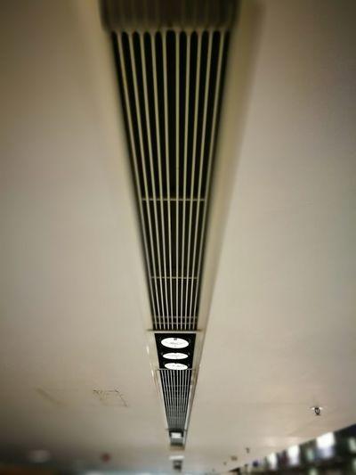 Ceiling Lines Geometric Kitec The City Indoor