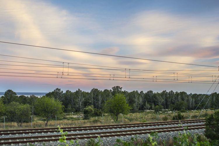 Railroad tracks by trees against sky