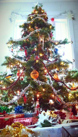 Xmas Tree Happy Christmas Christmas Tree Decorating Christmas