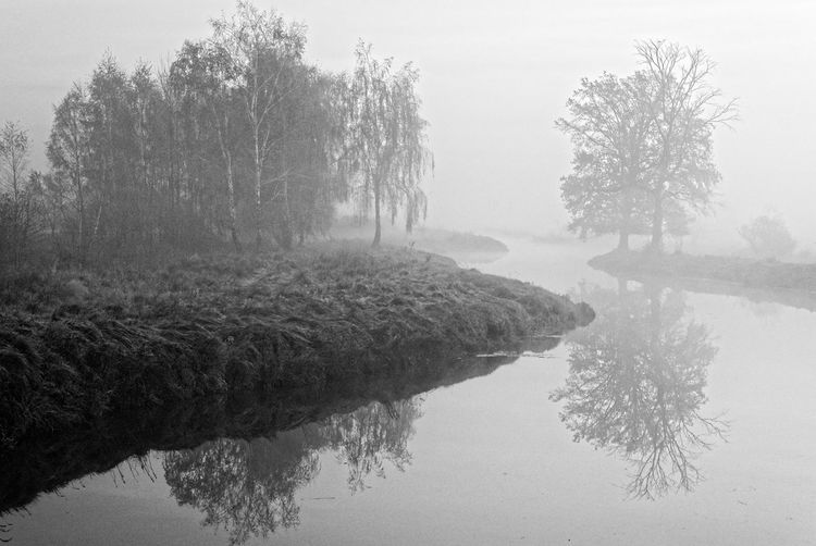 Misty river River View Riverside Water Reflections Atmospheric Beauty In Nature Black And White Day Fog Growth Lake Misty Morning Misty Mornings Mysterious Nature No People Outdoors Reflection River Curves Scenics Sky Tranquil Scene Tranquility Tree Water Waterfront