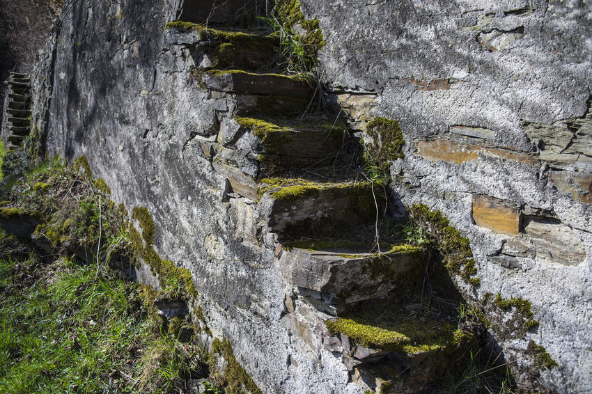 Vineyard Vineyard Stairs Natural Stone Canon Fd 28, 2.8 Standing Steps Tranquility Wall Beauty In Nature Bildfolge Close-up Day Focus On Foreground Moss Nature No People Old Outdoors Photography Rapid Rock - Object Scenics Selective Focus Steep Up Steep Vintage Lens Ways