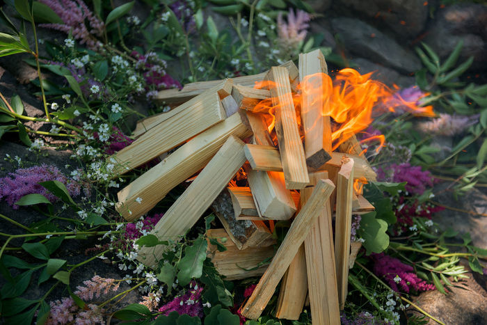 wedding flowers smudge Backgrounds Beauty In Nature Ceremony Close-up Culture EyeEmNewHere Fire Firewood Flame Flames Flower Flowers Greenhouse Leisure Activity Nature Outdoors Plant Smudge Tradition Wedding Wedding Day Place Of Heart Sommergefühle