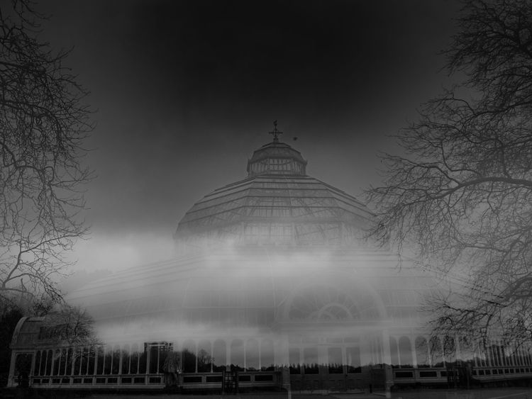 In camera double exposure, Sefton Park, Liverpool, England Double Exposure Liverpool Liverpool England PalmHouse Architecture Bare Tree Building Exterior Built Structure City Day Dome Doubleexposure Fog Incameraeffect Nature No People Outdoors Sefton Park Sky Travel Destinations Tree