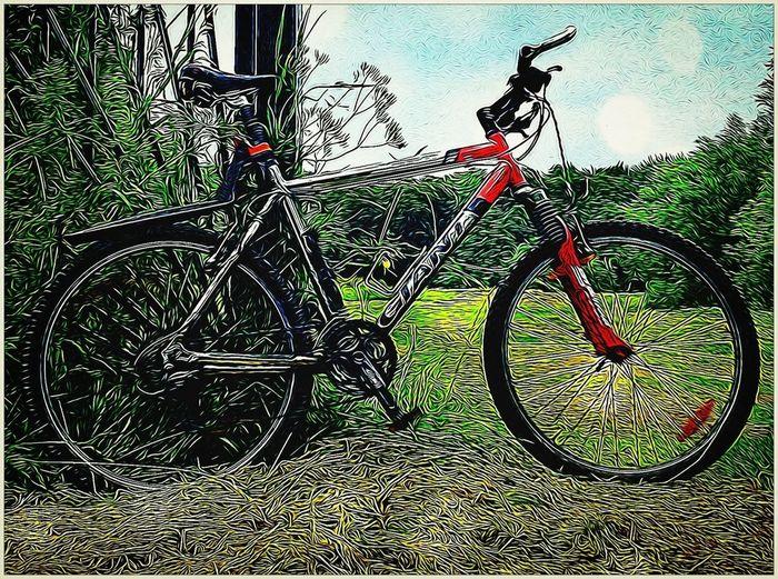 My Mountainbike Bike Week Spendind a few hours on my bike