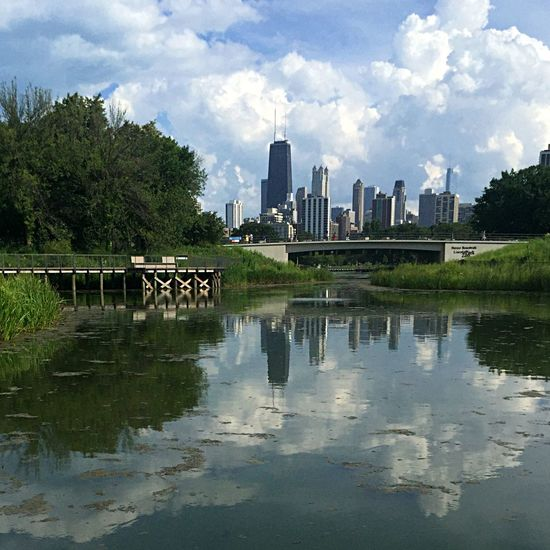 View of the city from café Brauer Lincoln Park Zoo Nature On Your Doorstep IPSWebsite Cityscape Walking Around The City  Eye4photography