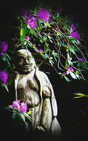 Statue Sculpture Multi Colored Close-up Amateurphotography Canonphotography Outdoors Beauty In Nature Nature Scotland Tree Flower Adventures Forrest Buddha No People Night Indoors