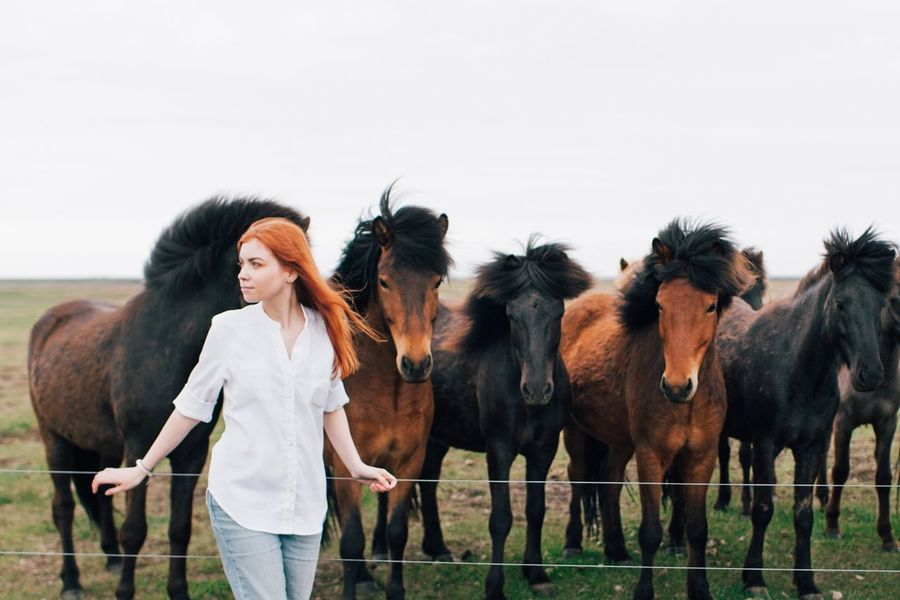 My Year My View Domestic Animals Animal Themes Horse Mammal People Farm Life Togetherness Girl Outdoors Lifestyles Lifestyle Travel Traveling Farm Iceland Animals Horses The Great Outdoors - 2017 EyeEm Awards in Iceland Neighborhood Map Pet Portraits