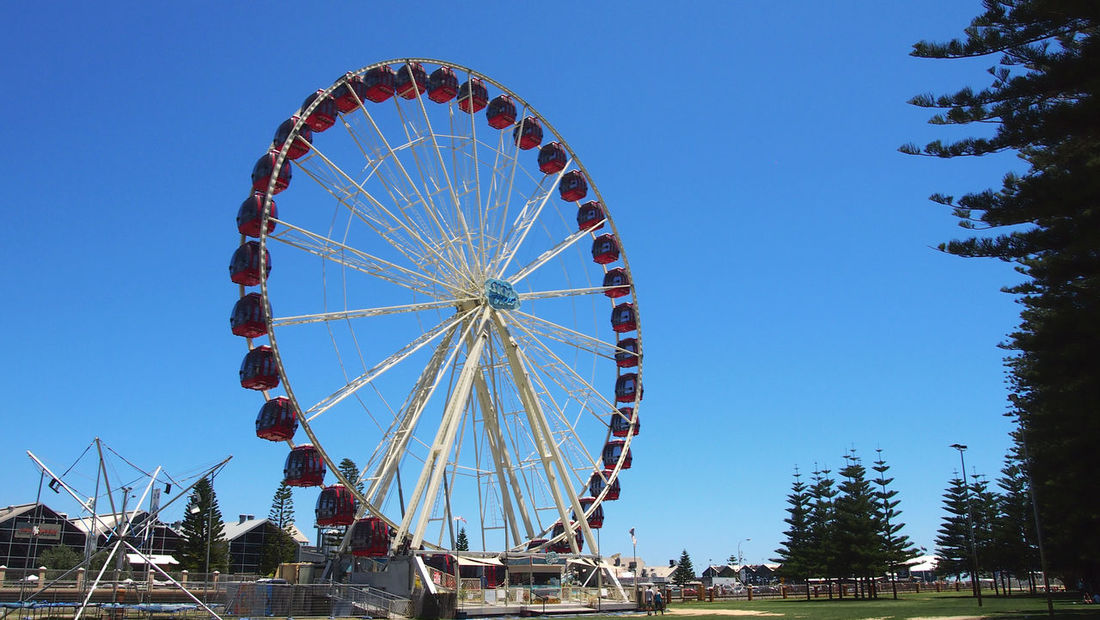 Sightseeing in beach town Fremantle, Perth, Australia Australia City City Life Fremantle, Western Australia Perth Perth Australia Sightseeing Tourist Attraction  Travel Traveling Travelling Western Australia Amusement Park Amusement Park Ride Architecture Arts Culture And Entertainment Australia & Travel Big Wheel Blue Built Structure Clear Sky Day Ferris Wheel Fremantle  Fremantle, Perth Low Angle View Nature No People Outdoors Sky Tourist Destination Travel Destinations Tree