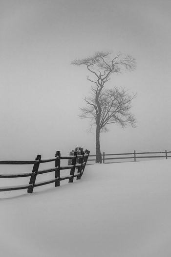 Bare tree by fence against sky during winter
