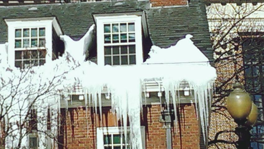 Icy! Icicles Cambridge Cambridge