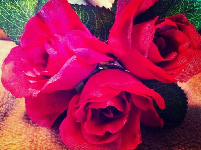 Bought roses for myself