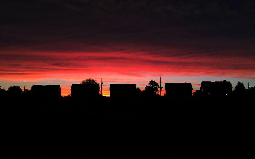 Bucolic Sunset