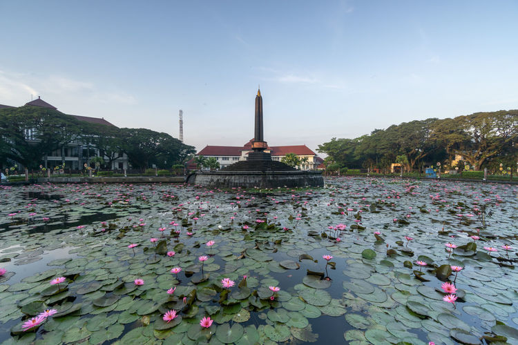View of water lilies in temple against sky