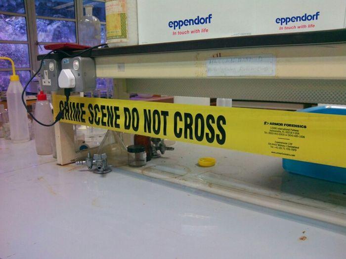 Forensics Laboratory Asusprime AsusTransformerPrime
