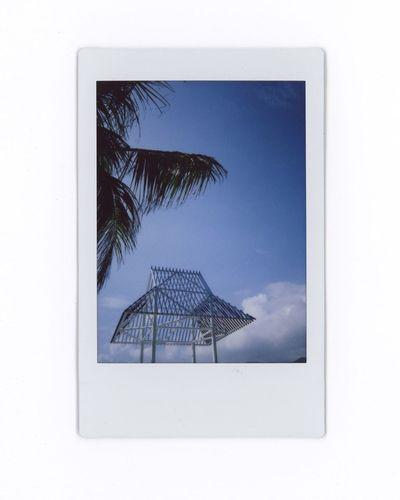 Palm trees against blue sky seen through window