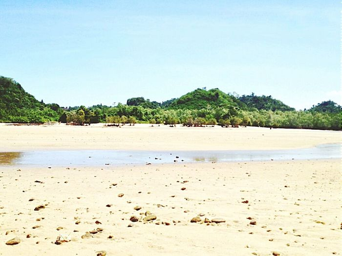 Lost beach. Clungup. Malang Indonesia Beach Little Island Beautiful View EyeEm Indonesia Happiness Beautiful Nature Nature_collection Plant Nature Landscape Portrait Mangrove Life Mangrove Island